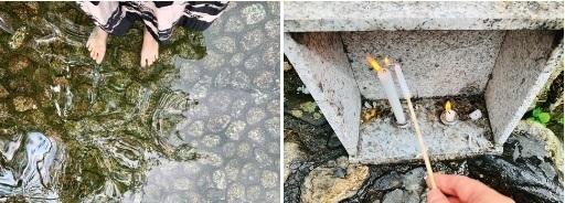 下鴨神社の足つけ神事.jpg